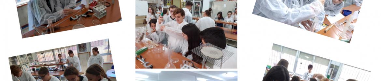 Laboratorio 2eso